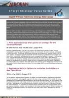 Expert Witness Testimony (Energy Rate Cases)